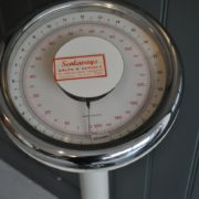 Doctor's scales
